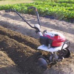 Front Rotary Tillers