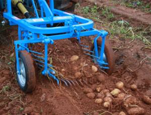 patato digger