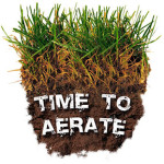 when to aerate
